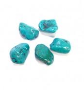 Turquoise (Semi Precious Stones)